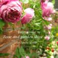Roseshow2009